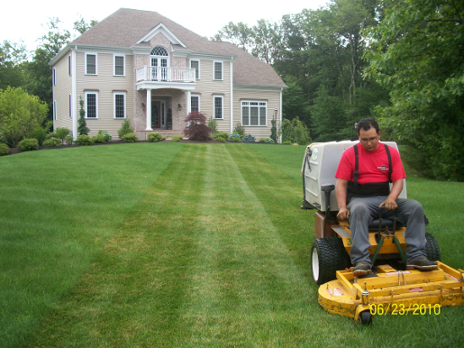 The Secret to Crabgrass control: North Attleboro Landscaper