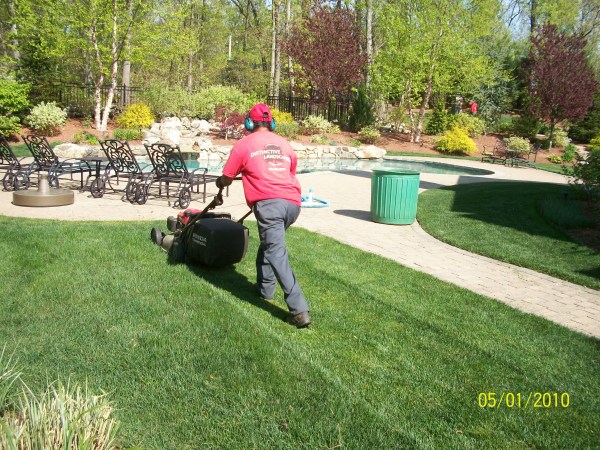 Lawn Mowing Techniques Mulching Vs Bagging Distinctive