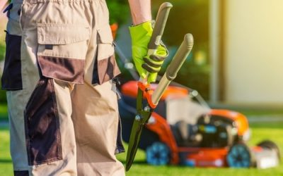Landscape Service Providers Mansfield- Professionals Can Make a Difference