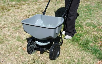 Mansfield Lawn Fertilizing For The Spring – Tips for Keeping Your Lawn Healthy And Green