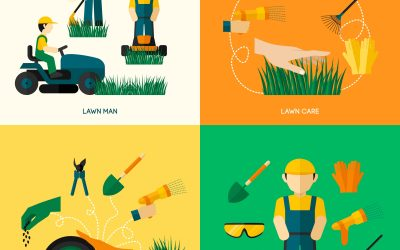 What Services Can A Norfolk Lawn Care Company Offer Beyond Grass Cutting?