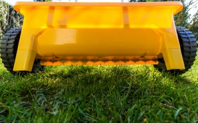 Lawn Fertilizing Plainville – Organic, Weed Control, And Other Choices To Consider