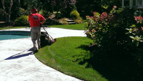 What to look for this Spring? North Attleboro Lawn Care