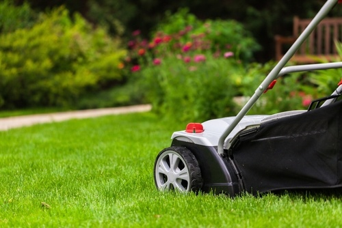 A Few Tips For Mowing Your Grass Lawn In Wrentham To Achieve The Best Results Possible